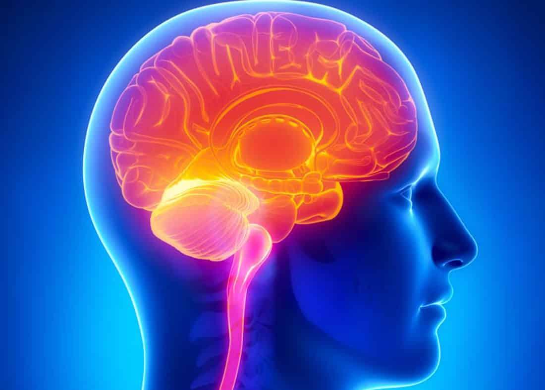 Alzheimers Disease Sugar Impact