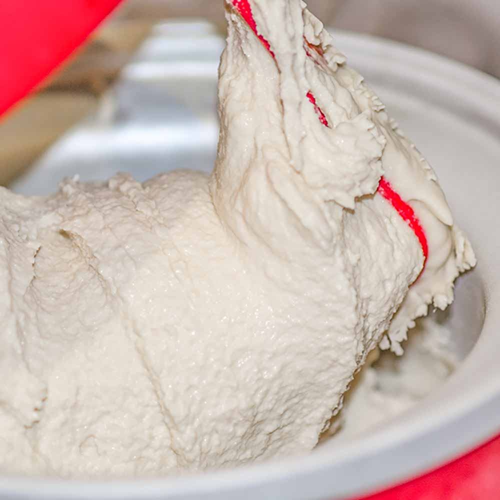 How to make Dairy Free Coconut Ice Cream
