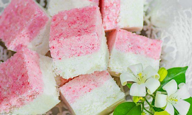 Keto Candy – Sugar Free Coconut Ice – Sweet Gluten Free Treats